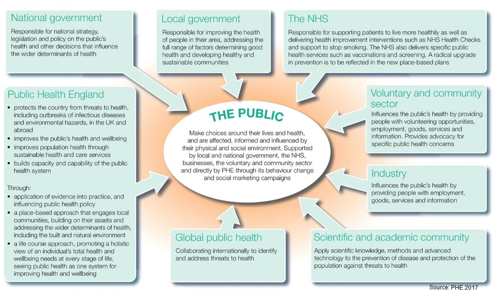 health government local public and
